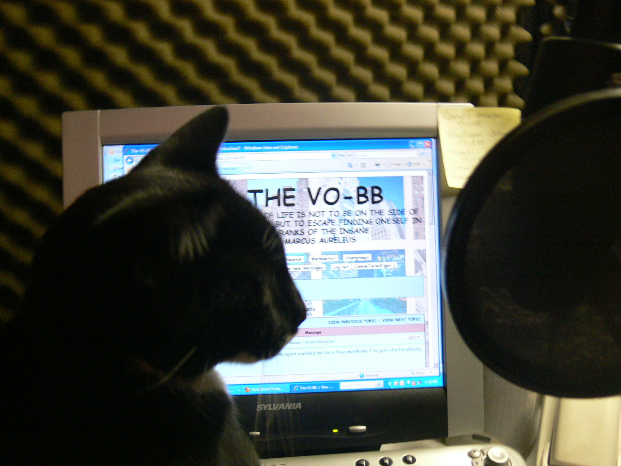 Louie reading the VO-BB and getting ready to record
